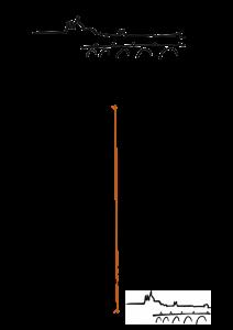 cp-menuraspipav2016